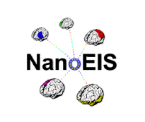 NanoEIS: Nanotechnology Education for Industry and Society