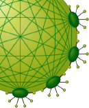 Volvox: A network for European bioscience education